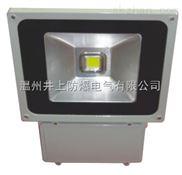 HGF909 LED节能泛光灯防爆泛光灯