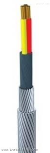 石油勘探用承荷探测电缆