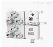 BMDX防爆照明(动力)配电箱(检修电费盘)