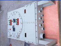 非标IIC级防爆照明配电柜定做多少钱