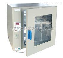 上海厂家微电脑立式鼓风干燥箱