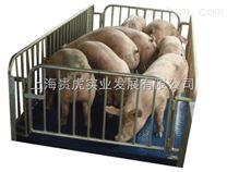 畜牧秤1吨,称猪2吨电子称价格