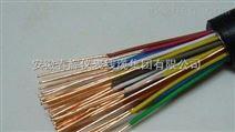 阻燃通信电源用软电缆 中国驰名商标产品 安徽省百强企业