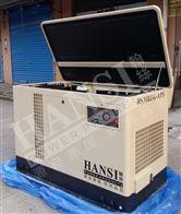 HS30REG30KW省油型汽油发电机