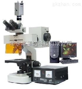 正置荧光显微镜 型号:SLS13-DFM-20C
