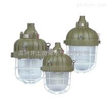 HRD81-42b1H防爆紧凑型节能灯