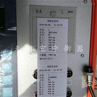 新疆5T汽车称重检测仪