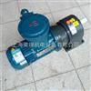 EX-2HP防爆变频减速电机/上海防爆减速电机厂