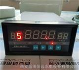 多通道动态TDS-163277/TDS-243277智能温度巡检仪上海厂家