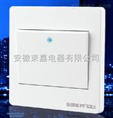 束嘉开关插座面板86型5孔斜五孔家用墙壁带USB暗装白色