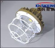 礦用照明20W防爆燈帶網罩礦用LED防爆燈