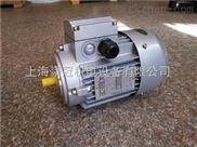 中研紫光MS100L-2电机