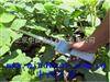(WLY)中西植物冠层测量仪(标配25个传感器)库号:M401497