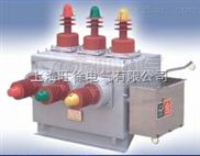 ZW10-12户外交流高压真空断路器 高压电气产品