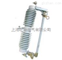 RWWG1-10型跌落式熔断器