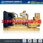 BR-30W-30千瓦柴油发电机