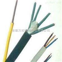 屏蔽氟塑料高温电缆