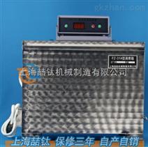 出售FZ-31A型雷氏沸煮箱/水泥安定性试验沸煮箱厂家直销