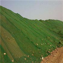 新料聚乙烯盖土网主要用途