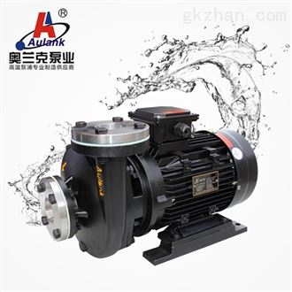 RGP-30耐高温反应釜导热油泵