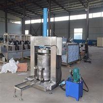 500蔬菜液壓壓榨機