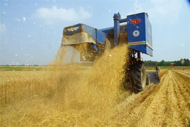 在使用玉米播种机会遇到哪些问题呢?