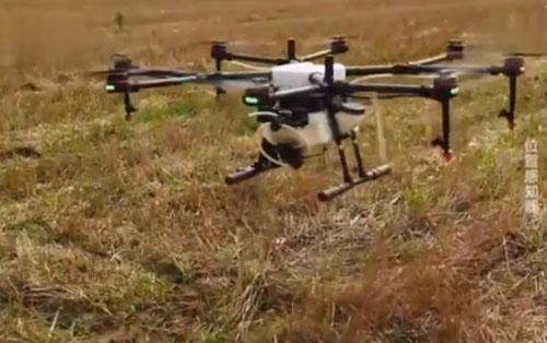 无人机结合北斗导航撒农药 几百亩地只需数分钟