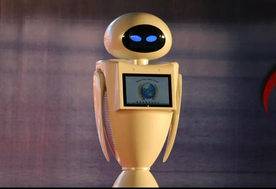 eva-01-北京商业定制机器人eva-01专业设计价格