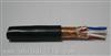 WZR-DJYPE WZR-DJYP2E低烟无卤阻燃计算机电线电缆
