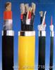BPFFP系列耐高温变频电力电缆