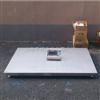 DCS-HT-I长沙600kg不锈钢电子地秤