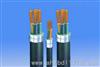 ZRC-VV22阻燃铠装电力电缆